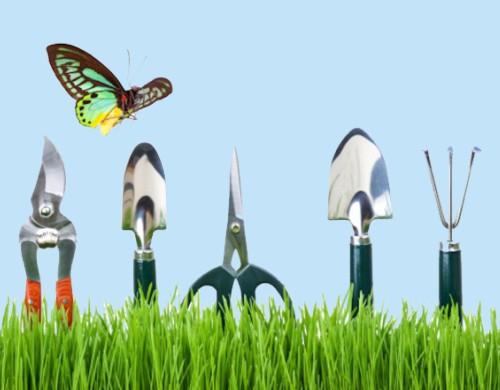 Бабочка и садовый инструмент на траве